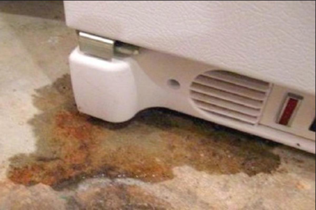 Tủ lạnh bị chảy nước là bị sao? Cách xử lý tại nhà chỉ 15 phút