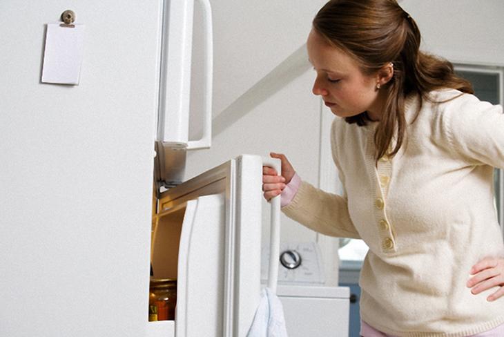 tủ lạnh chạy không ngắt do cánh đóng không kín