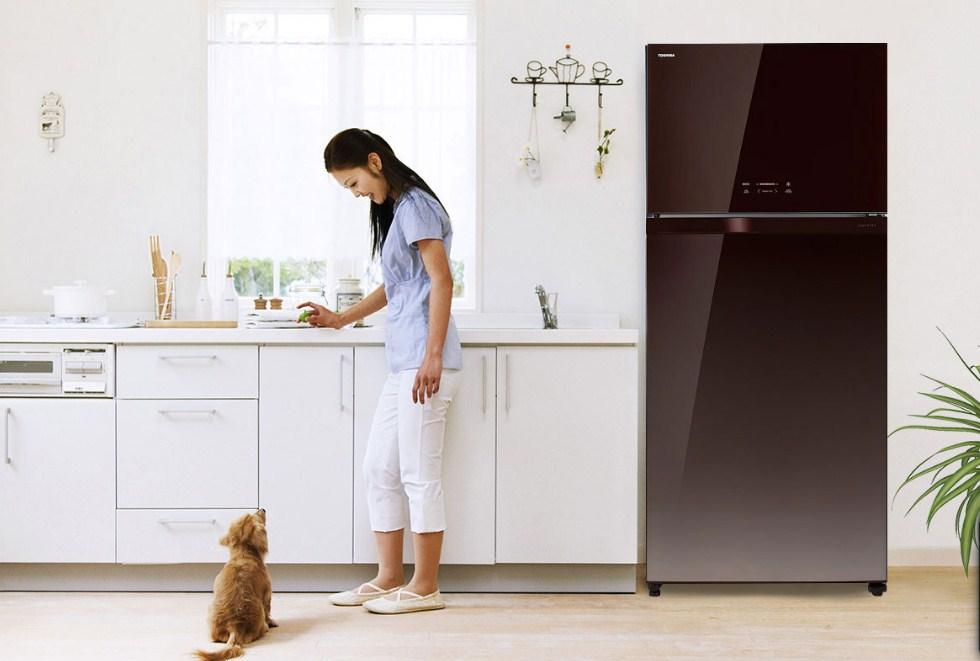 Tủ lạnh Toshiba có tốt không? Có nên mua không? [Chuyên gia tư vấn]