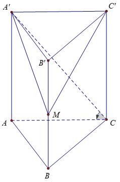 lang-tru-tam-giac-deu-2
