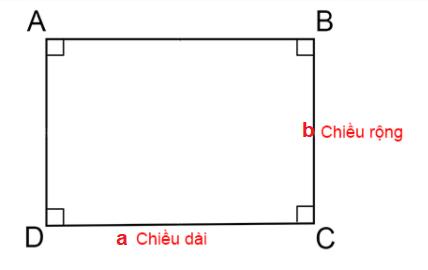 cont-thuc-tinh-nua-chu-vi-hinh-chu-nhat
