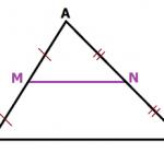 Đường trung bình của tam giác, hình thang chi tiết từ A - Z [VD minh họa]